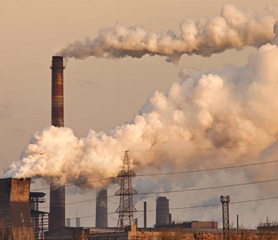 """I. Bonomo: """"La economía, tal como está planteada, tiene muchos costos ambientales que termina pagando lasociedad"""""""